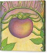 Sugarplum #4 Acrylic Print