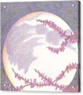 Sugarplum #9 Acrylic Print