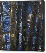 Sukkot II Stars 2015035  Acrylic Print