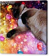 Sulley's Happy Holiday Acrylic Print