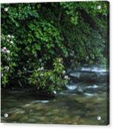 Summer Along Birch River Acrylic Print