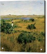 Summer At Shinnecock Hills Acrylic Print by William Merritt Chase