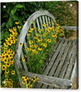 Summer Bench Acrylic Print