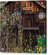Summer Cabin Acrylic Print