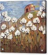 Summer Cotton Acrylic Print