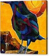 Summer Crow 2 Acrylic Print