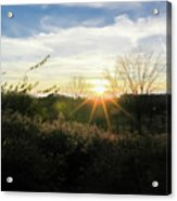 Summer Day Going Into Evening.  Acrylic Print