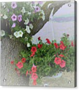 Summer Day Acrylic Print