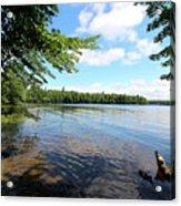 Summer Dreaming On Lake Umbagog  Acrylic Print