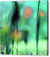 Summer Dreams Abstract Acrylic Print