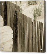 Summer Dunes Acrylic Print