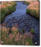 Summer Evening On Palouse River Acrylic Print