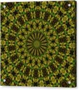 10696 Summer Fire Mask 54 Kaleidoscope 1 Acrylic Print