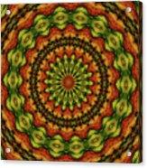10698 Summer Fire Mask 54 Kaleidoscope 3 Acrylic Print