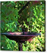 Summer Fountain Impasto Acrylic Print