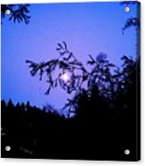 Summer Full Moon Acrylic Print by Garnett  Jaeger
