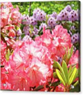 Summer Garden Pink Purple Rhododendrons Baslee Acrylic Print