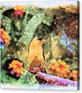 Summer Goldfinch - Digital Paint 5 Acrylic Print