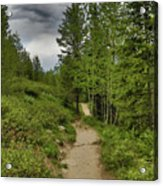 Summer Hike And Storm Clouds Acrylic Print