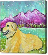 Summer In The Mountains With Summer Snow Acrylic Print