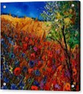 Summer Landscape With Poppies  Acrylic Print