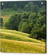 Summer Morning On The Farm Acrylic Print