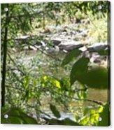 Summer Mountain Creek Acrylic Print