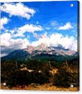 Summer On Mt. Shasta Acrylic Print