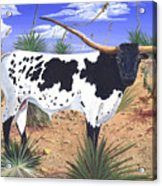 Summer on the High Mesa Acrylic Print