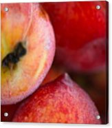 Summer Peaches Acrylic Print