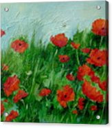 Summer Poppies Acrylic Print