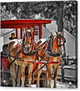 Summer Ride Acrylic Print