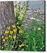 Summer River Bank View             July            Indiana Acrylic Print