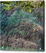 Summer Sprinkler Acrylic Print