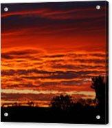 Summer Sunset 2 Acrylic Print