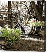 Summer Sweetness Acrylic Print