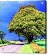Summer Thunder Acrylic Print