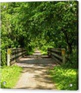 Summer Trail Scene 4 A Acrylic Print