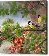 Summer Vine With Pine Tree Acrylic Print