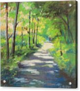 summer woods at Kenoza Lake Acrylic Print by Leslie Alfred McGrath