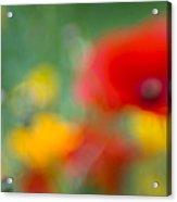 Summerfeeling Acrylic Print