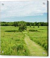 Summer's Day On The Prairie Acrylic Print