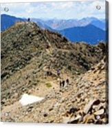 Summit On Mount Massive Summit Acrylic Print