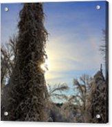 Sun And Snow  Acrylic Print