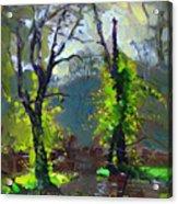 Sun Ater Rain Acrylic Print