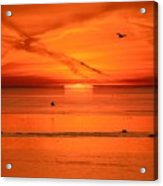 Sun Disk Behind The Cloud  Acrylic Print