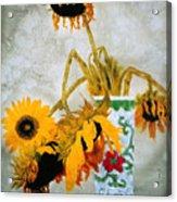 Sun Flowers No.1  Acrylic Print