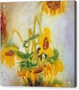 Sun Flowers No.2 Acrylic Print