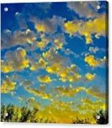 Sun Kisses Acrylic Print
