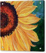 Sun Lover Acrylic Print